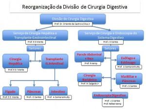organograma atual