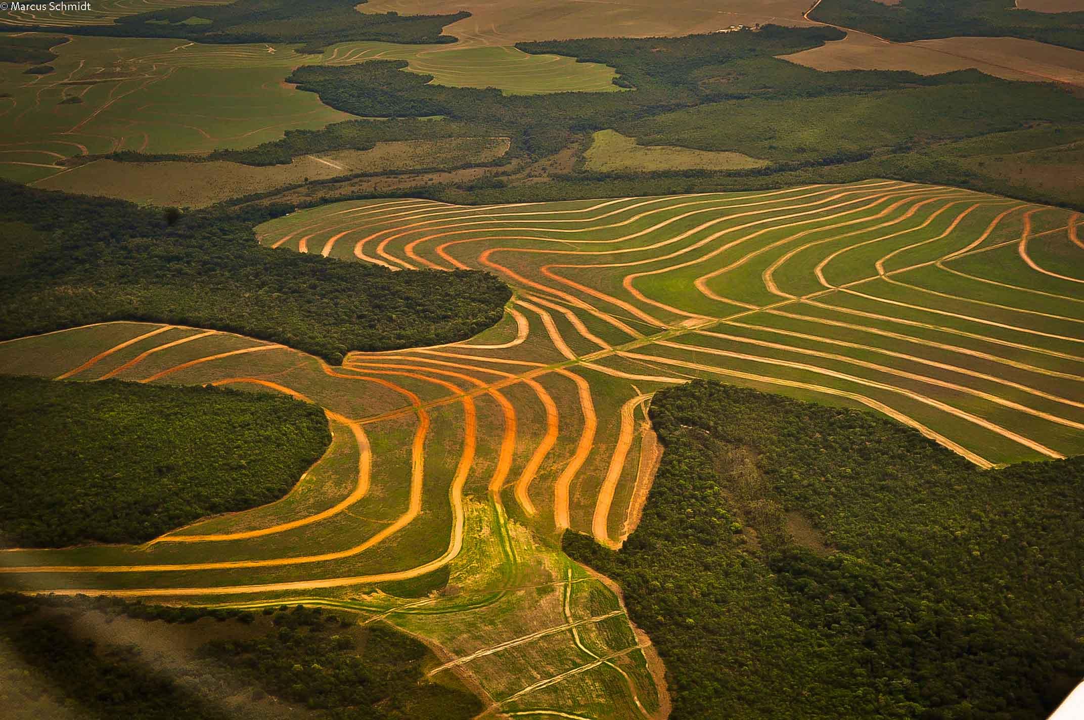 Região no entorno do PI do Xingu, agricultura sobre floresta