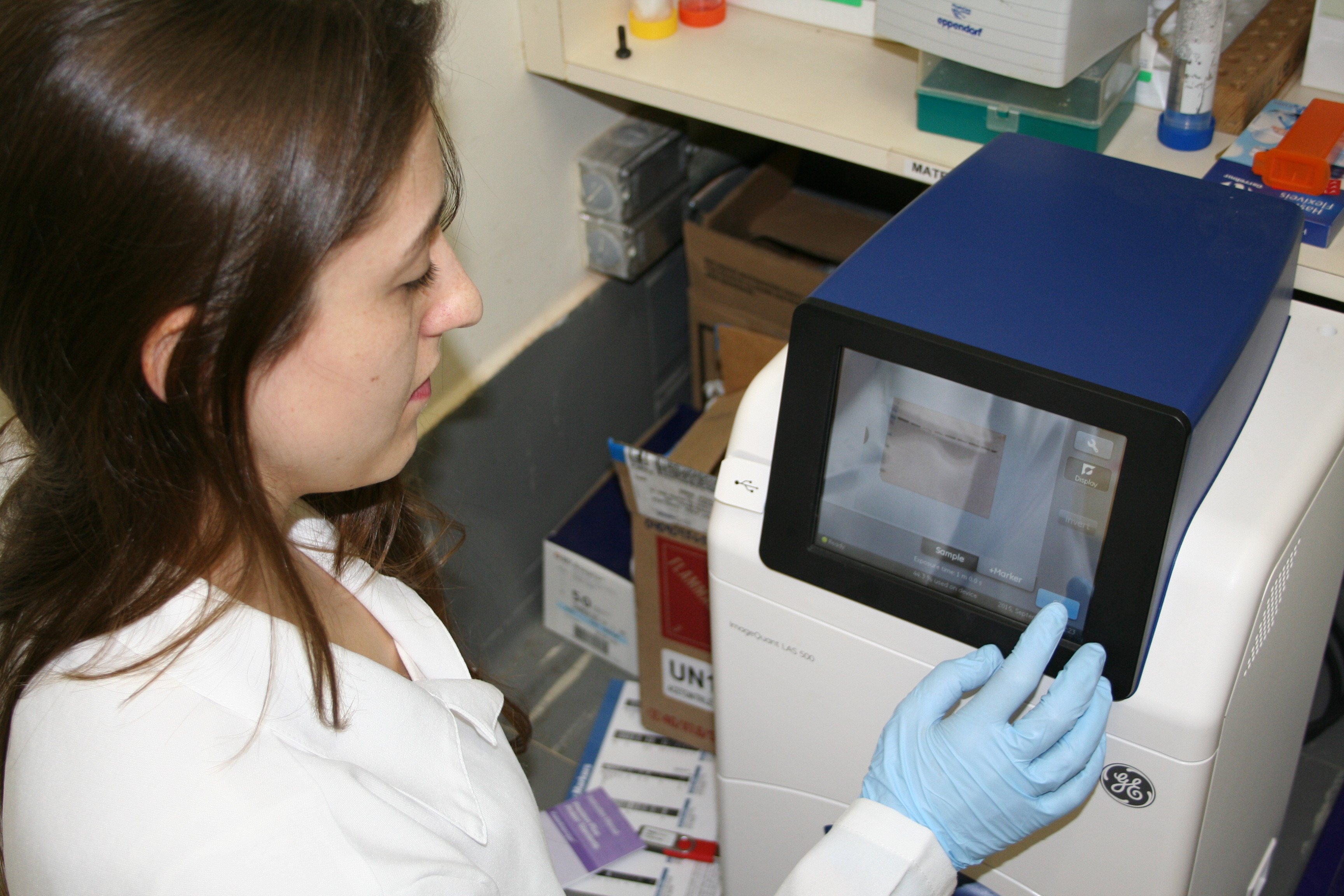 Digital gel imager (GE Healthcare )