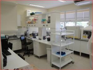 Laboratório do Prof. Lourenço 1